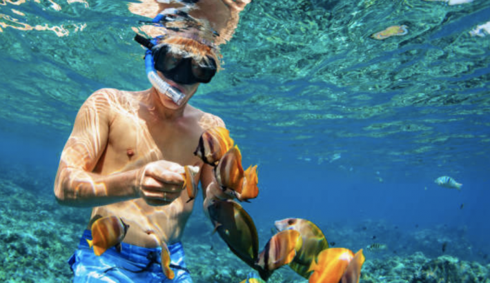 Snorkel Spots Around Playa Del Carmen