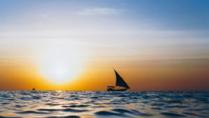 Playa Boat Tours Sunset